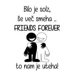 bilo je solz še več smeha friends forever to nam je uteha-01