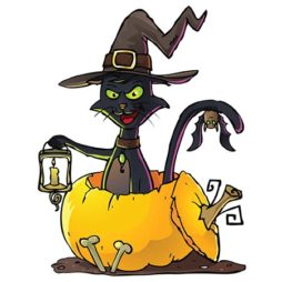 halloween črna mačka