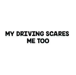 my driving scares me to-02